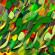 پیام شادباش نوروزی رئیس شورای مرکزی سازمان عدالت و آزادی ایران اسلامی