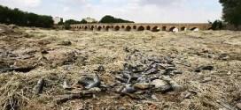 گزارش مرکز مطالعات استراتژیک ترکیه در زمینه بحران آب در ایران: خشکسالی در ایران، بحرانی برای منطقه