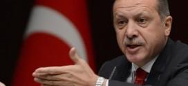 تیغ اردوغان بر چهره دموکراسی