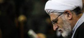 تحلیل فیرحی درباره حکمرانی حزبی و ساختار سیاسی ایران