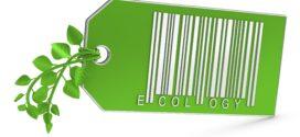 بازاریابی سبز،کلید توسعه پایدار