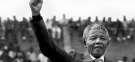 مرد خوب، حزب بد؛ توقف فساد در آفریقای جنوبی